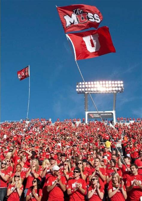 utah state student section 67 best images about utah state colleges on pinterest