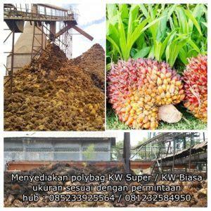 Jual Polybag Jakarta limbah kelapa sawit sebagai alternatif bahan bakar