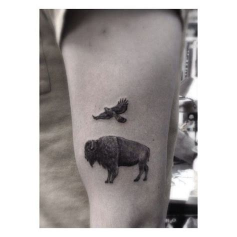 bison tattoo designs 1000 ideas about buffalo on bison