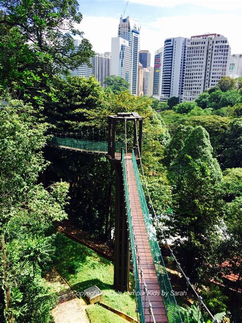 kl forest eco park a rainforest and a canopy walkway in
