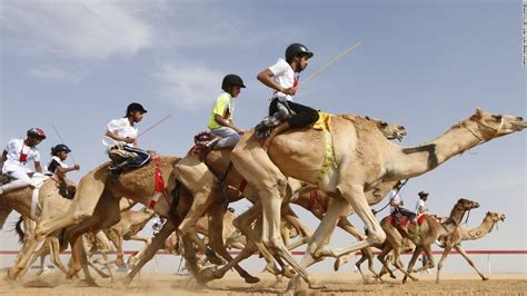 Watch Home Design Shows by Camel Racing The Multi Million Dollar Industry Mixing