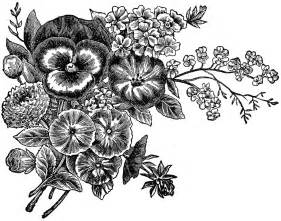 Black and white flowers wallpapers hd backgrounds images art photos
