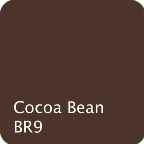 cocoa color 1000 images about color family browns on
