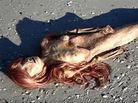 imagenes y videos de sirenas reales sirenas reales encontradas vivas 191 real o falso youtube