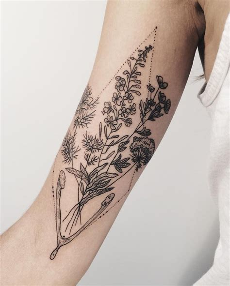 tattoo parlors queen anne flora of alaska fireweed tundra rose queen anne s lace
