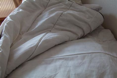deckbetten kaufen deckbett 2m x 2m beige braun gepaspelt in stuttgart