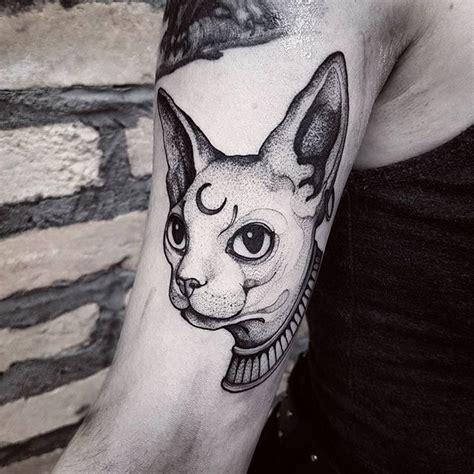 tattooed hairless cat 25 best ideas about sphynx cat on