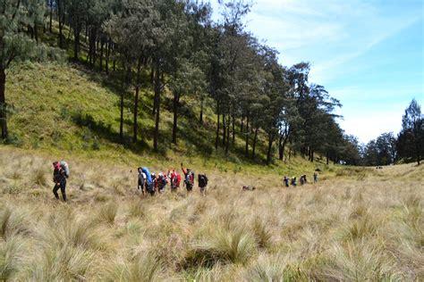 rekomendasi film pendakian gunung rekomendasi 23 padang sabana di indonesia yang akan