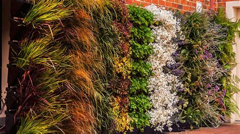 The easiest diy vertical garden for your home