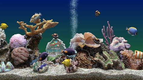 live wallpaper for pc full version the best virtual aquariums for your pc