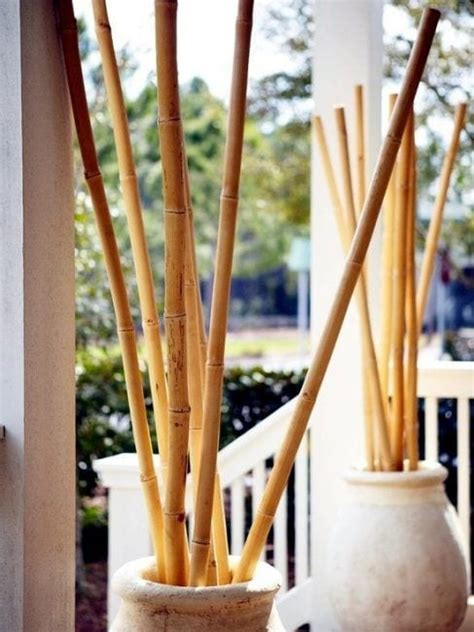 ca as de bambu decoracion decoraci 243 n con bamb 250 20 ejemplos para decorar tu casa
