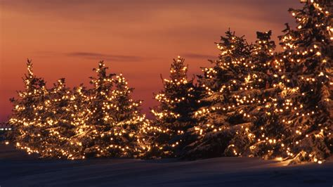 christmas lights background wallpapers9