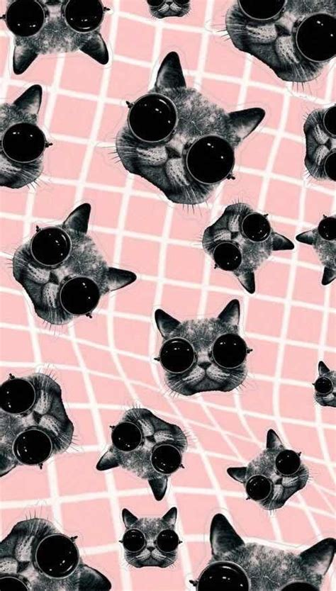 cat themed wallpaper cat themed wallpaper for your phone a curated list