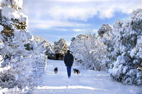 fotos sobre invierno as 237 se vive el invierno en m 233 xico fotos im 225 genes