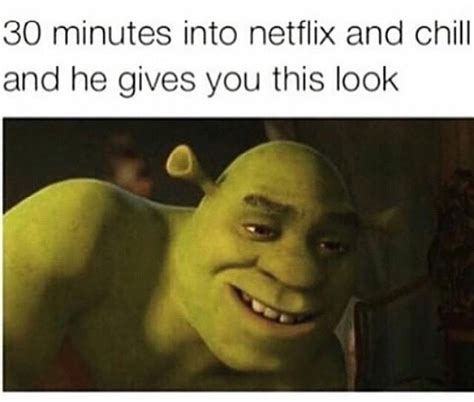 Chill Meme - shrektastic netflix and chill know your meme
