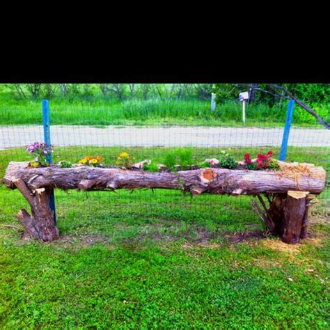 loving this cedar log planter craft ideas