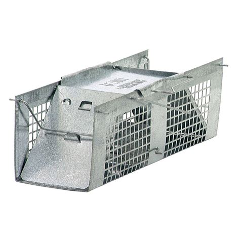 havahart x small 2 door live animal cage trap 1020 the