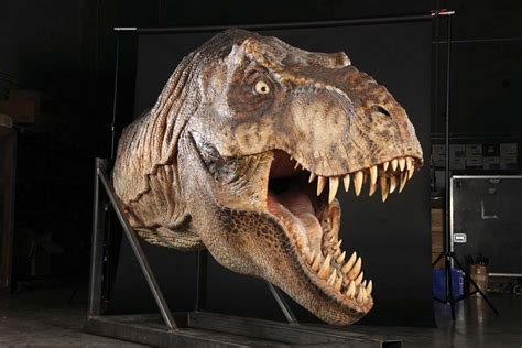 The Lost World Jurassic Park by Full Scale Male T Rex Head Display From Jurassic Park