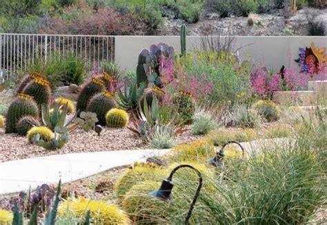 southwestern landscaping tuscon az photo gallery