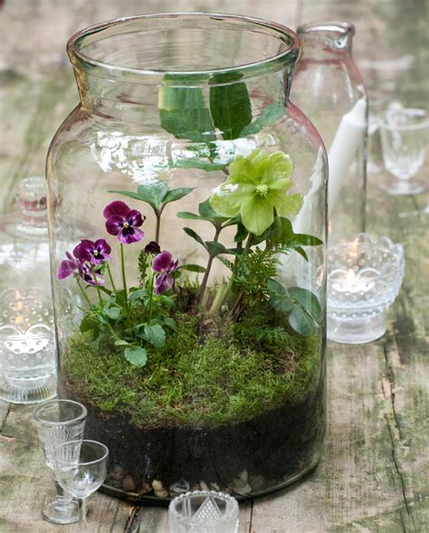 Handmade Terrariums - diy glass jar terrarium