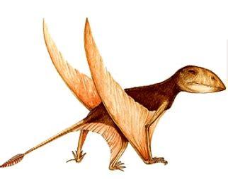 dinosauri volanti prima pagina