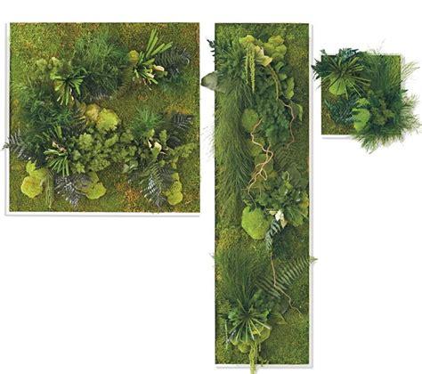 Fern Moss Wall fern and moss wall vivaterra room