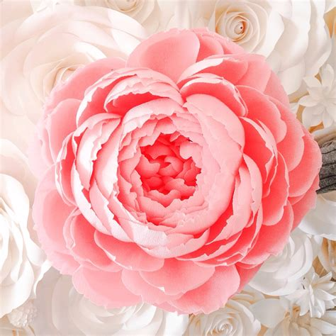 How To Make Large Crepe Paper Flowers - large paper flower crepe paper peony paper