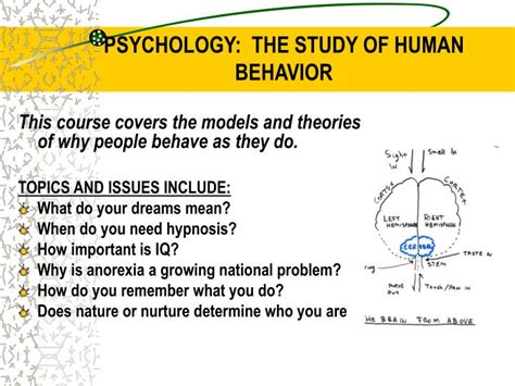studies in the psychology of volume 3 analysis of the sexual impulse and the sexual impulse in books ppt kenmore west social studies department elective