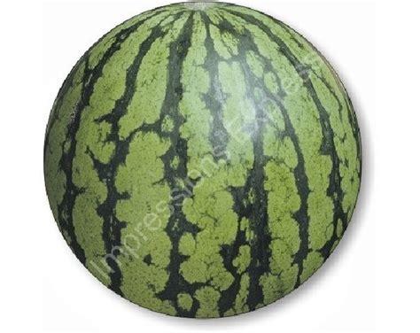 fruit rounds watermelon fruit mousepad
