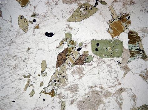 diorite thin section rocks under the microscope index