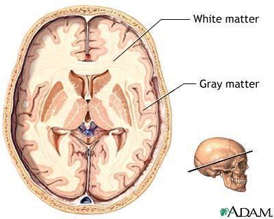 grey matter memory alert even slightly high blood pressure may age