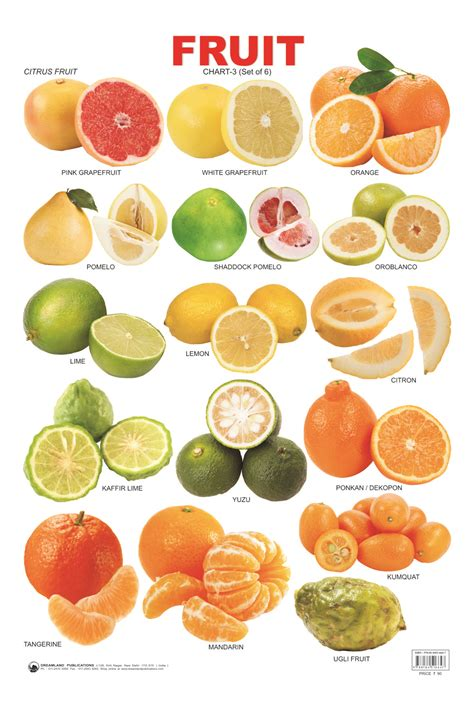 fruit 20 where to buy fruit charts fruits charts price review and buy in dubai