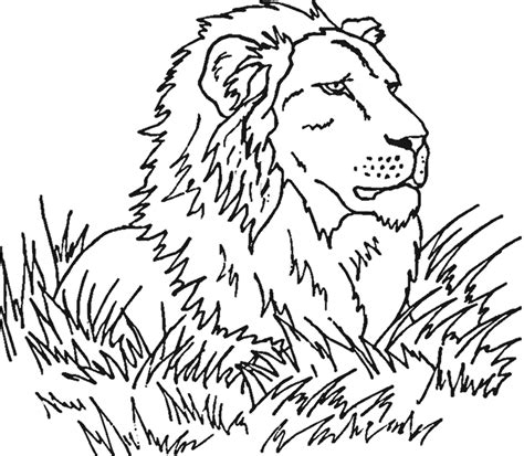 african plains animals coloring pages coloring pages