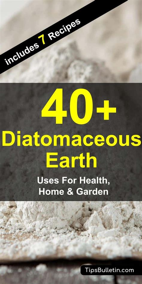 How To Use Diatomaceous Earth For Detox by 40 Amazing Diatomaceous Earth Uses For Health Home And