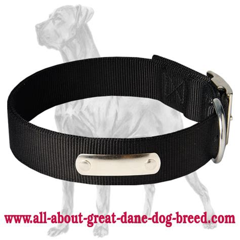 collar with name tag 2 ply collar wih name tag for great dane c42 1094 2 ply collar wih
