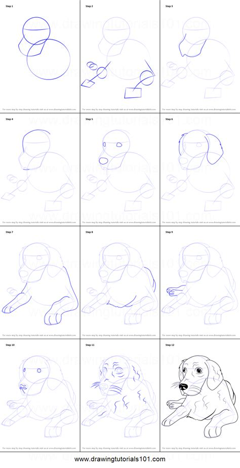 how to draw a golden retriever how to draw a golden retriever printable step by step drawing sheet