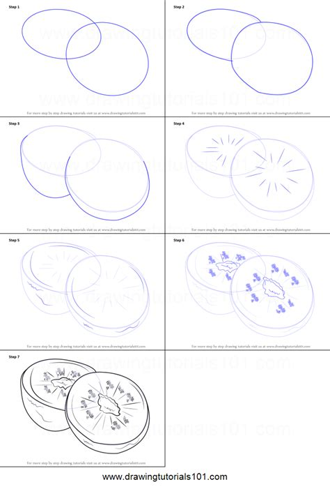 doodle draw step by step how to draw kiwi fruit printable step by step drawing