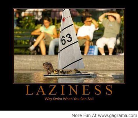 duck boat jokes 35 best sailing humour images on pinterest comic humor