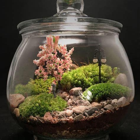 terrarium ideas bring  miniature natural scene