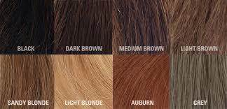 Different Types Of Brown Hair by A Guide To Different Hair Types And Color Girlsaskguys