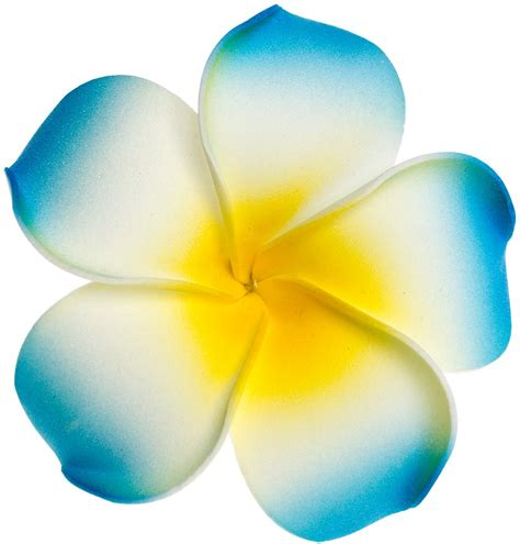 frangipani clipart purple hawaiian flower pencil and in