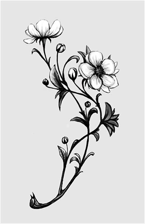 apple blossom tattoo designs apple blossom by curlyhair on deviantart