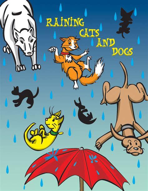 raining cats and dogs raining cats and dogs quotes quotesgram