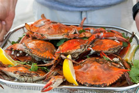 recipes and tips for throwing the perfect crab boil this