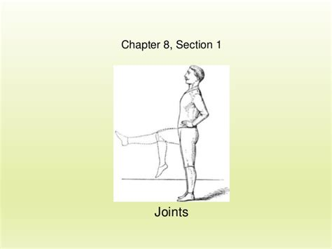 chapter 8 section 1 section 1 chapter 8 joints