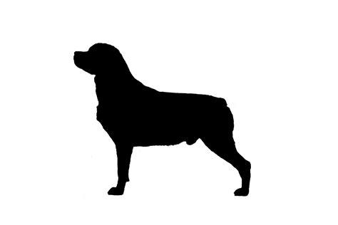 rottweiler silhouette rottweiler silhouette vinyl sticker decal
