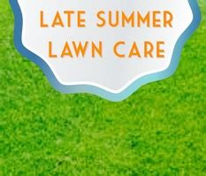 Late Summer Lawn Care | late summer lawn care gardenin angels