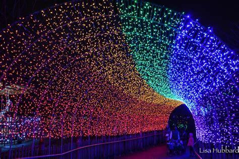 cincinnati zoo festival of lights pnc festival of lights cincinnati zoo lights