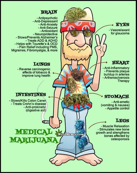 Funny Medical Memes - 25 best weed memes ideas on pinterest funny weed memes