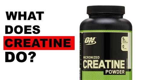 creatine does what what does creatine do cus gains